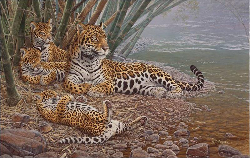 """""""La tigra"""", ilustración por Aldo Chiappe"""